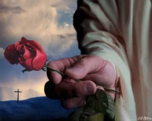 Jesus e a Rosa