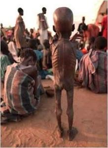 fomeemfrica1RaioXDaCarne