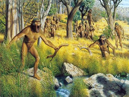 Australopithecus 2