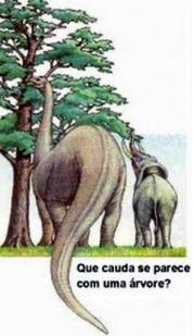 Dinossauro no livro de Jó