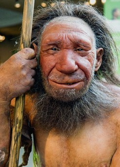 Homem de Neandertal 1 - Museu Neandertal em Mettman, na Alemanha