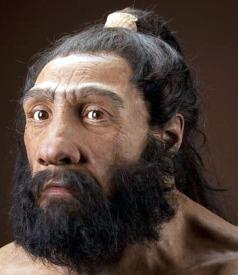 Homo Neanderthalensis 1